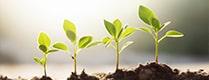 ヤマト産業(環境)